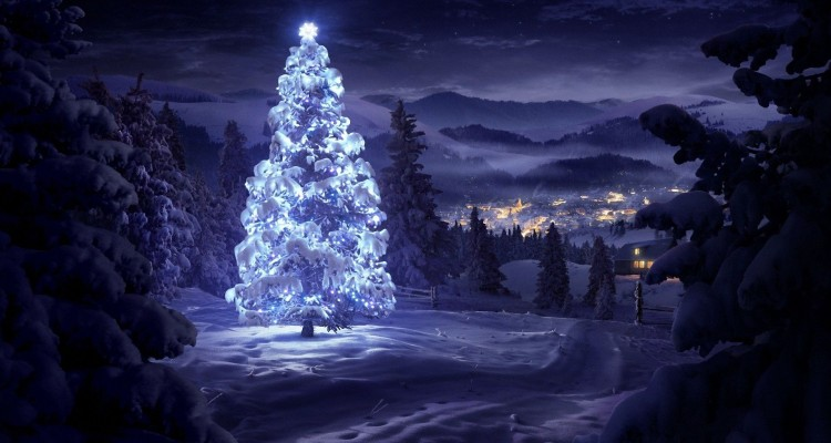 christmas-tree-in-the-snow-holiday-hd-wallpaper-1920x1080-5401