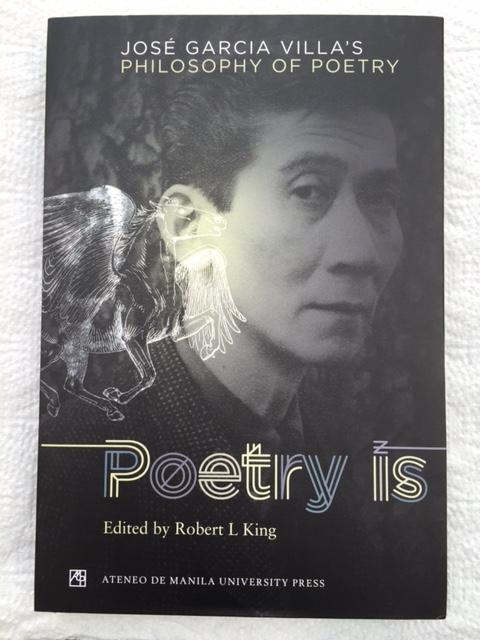 villa book cover